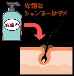 硫酸系シャンプー
